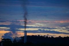 oil palm mill