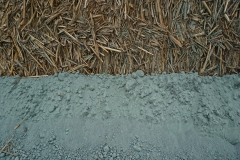 the intersection between basalt powder and the miscanthus harvest
